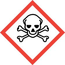 Skull Crossbones_symbol